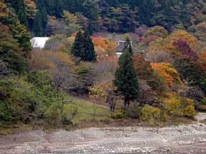 2015okutamako21.jpg