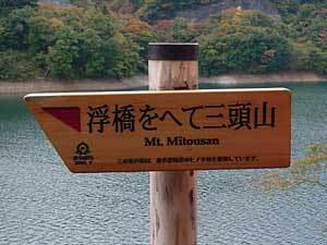 2015okutamako6.jpg