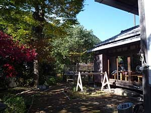 2016-11okutama48.jpg