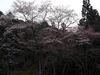 2016takao-21.jpg
