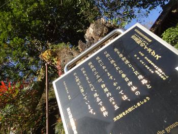2019-11okutama3.JPG