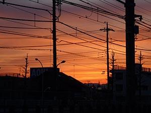 akishima-city3.jpg