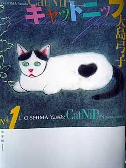 catnip1.jpg