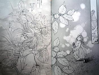 forest-story2-4.jpg