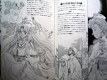 forest-story3-3.jpg