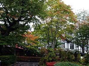 karuizawa2017-10-33.jpg