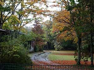 karuizawa2017-10-58.jpg