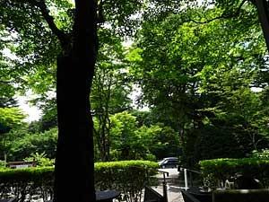 karuizawa4.jpg