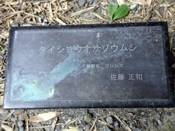mushizuka9.JPG