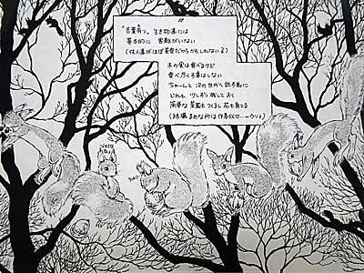 nobara2.jpg