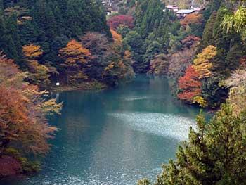 tamagawa2013-5.jpg