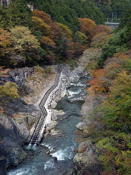tamagawa2013-9.jpg