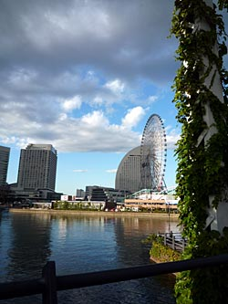 yokohama-city7.jpg